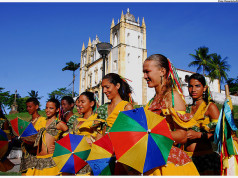 Brazil Travel Guide and Travel Information