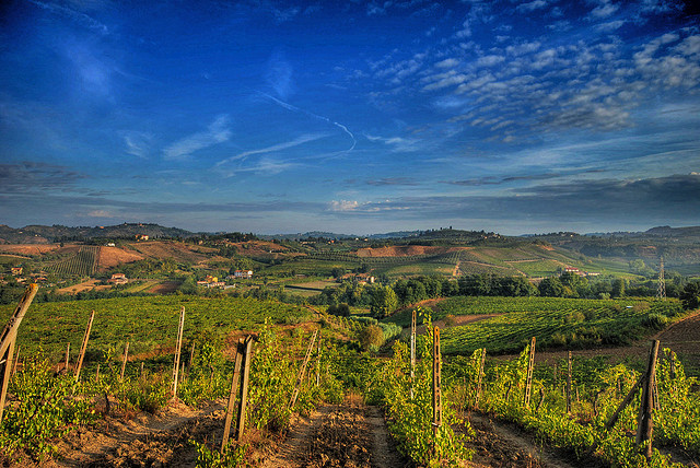 Rolling vineyards of the Chianti region