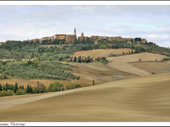 10 Top Things to Do in Tuscany, Italy